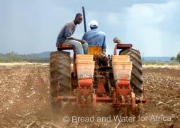 Baraka Farm Plow