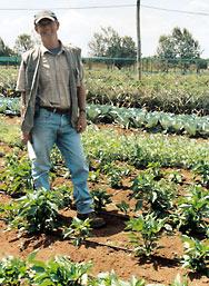 Jos Creemers from Baraka Farm