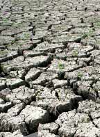 Kenya Drought Increases Hunger Risk