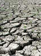 Kenya's Drought Causes Food Crisis