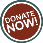 donate-now-button-big