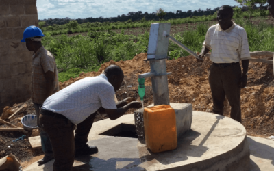 Water and Chicken Project in Sierra Leone